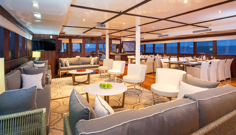 Galapagos Odyssey lounge
