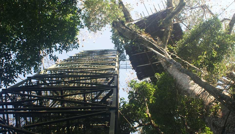 Sani Lodge tower