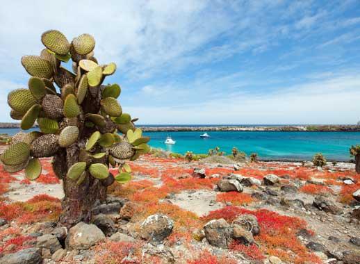 Santa Fe island