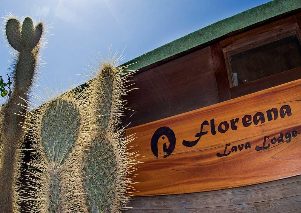 Lave-Lodge-G19-1